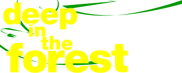 Deep in the Forest 9 am 31. August und 1. September 2012  - electronic beats